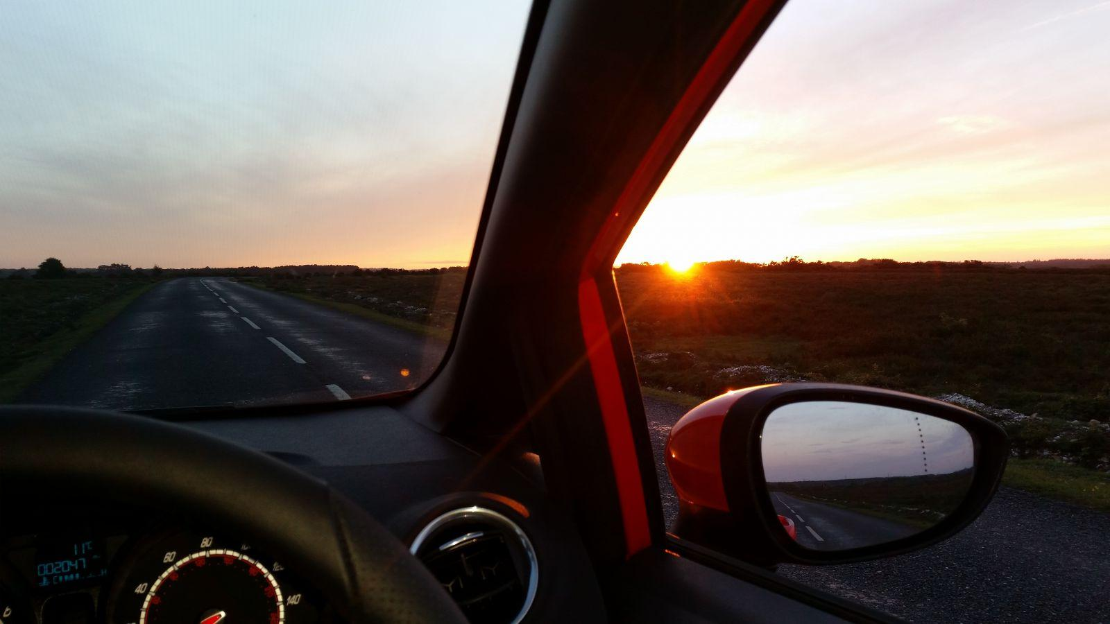 Evening drive across the forest