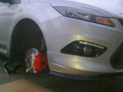 focus painted calipers