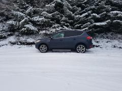 Kuga in the snow