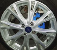 Blue calipers