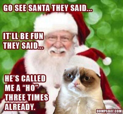 Grumpy-Cat-Christmas-8.thumb.jpg.30511ff4971adc9836521a9d6ef734c2.jpg